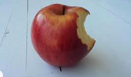 Apple Delays CSAM Detection Plans